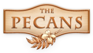 Pecans of Queen Creek